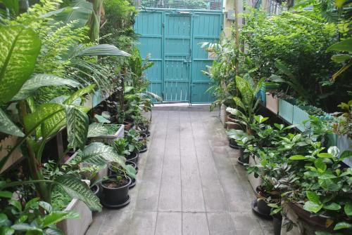 Eco House photo 4