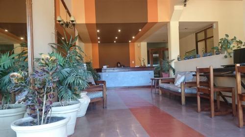 . Hotel Viola