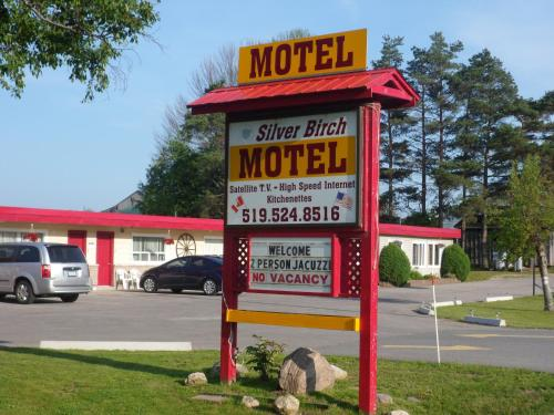 . The Silver Birch Motel