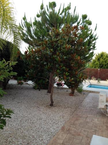 Villa Marina - Photo 3 of 20