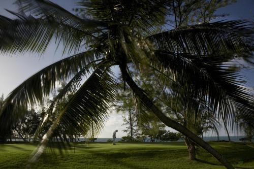 Coastal Road, 41601, Mauritius.