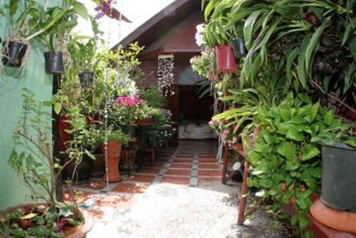 Shanti Lodge photo 10