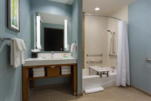 Hyatt Place Chicago/Downtown - The Loop Номер с кроватью размера «king-size», ванной и диваном-кроватью – Подходит для гостей с ограниченными физическими возможностями