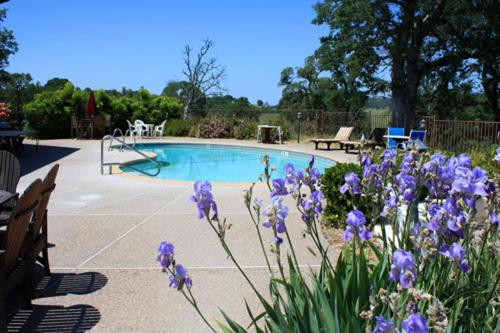 . Shenandoah Inn, MAJOR CREDIT CARDS REQUIRED for check in