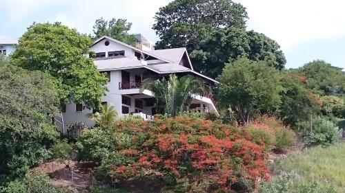 . The Nest Tobago Apartments