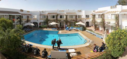 Camel Dive Club And Hotel   Boutique Hotel