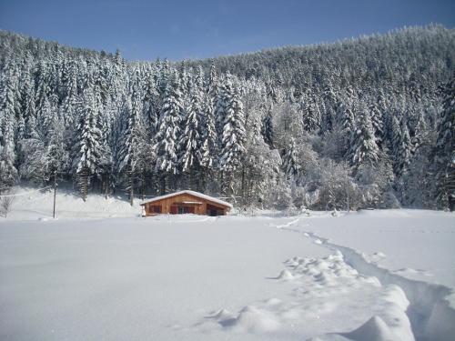 Chalet au bord du lac de Longemer - Xonrupt-Longemer