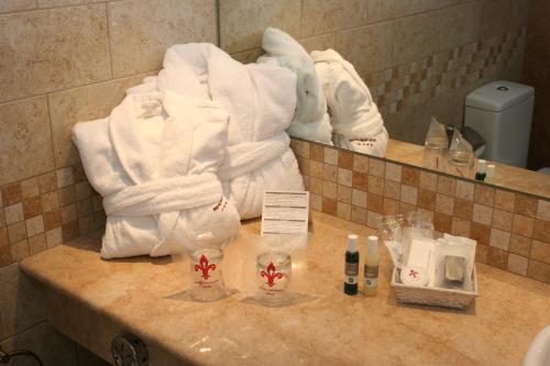 Фото отеля Hotel Spa Termes SERHS Carlemany