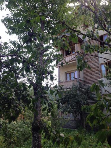 Ruso and Robi Apartment - Mestia