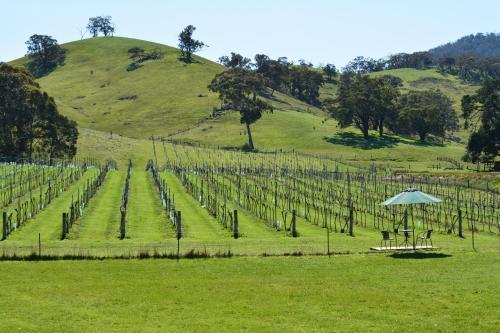 Фото отеля Blue House at Mountainside Wines