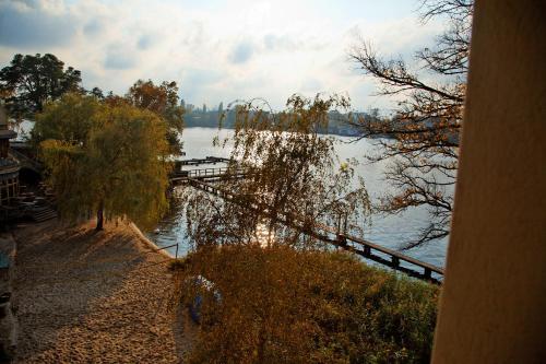 Seminar- und Gästehaus Flussbad Gartenstrasse photo 11