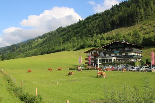 . Landhaus Rohregger