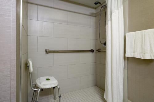 Holiday Inn Express Hershey-Harrisburg Area - Hummelstown, PA 17036