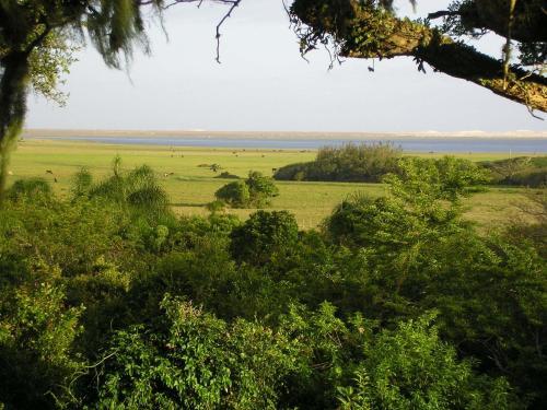 Foto de Aldeia Santuario das Aves