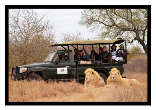 . Elandela Private Game Reserve and Luxury Lodge