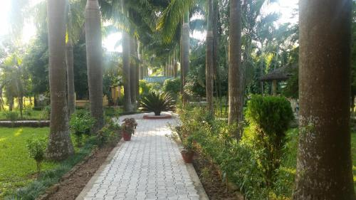 Royal Tiger Safari Resort, Narayani