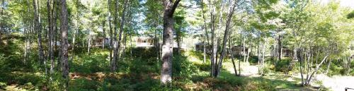 Roseway River Cottages (Bed and Breakfast)