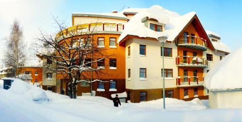 Apartmány Rokytka u sjezdovky - Apartment - Rokytnice Nad Jizerou