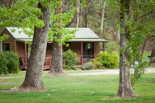 Фото отеля Beechworth Holiday Park