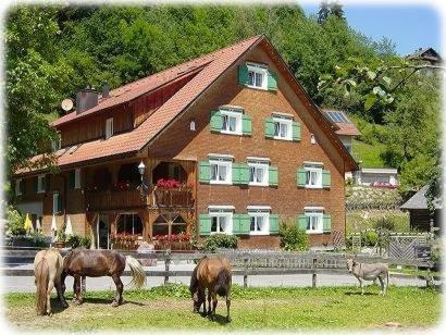 Hotel Gasthaus Schäfle - Bürserberg