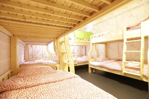 Tiger Lily Hostel photo 11