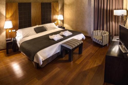 Double Room with Spa Access Hotel & Spa La Salve 14