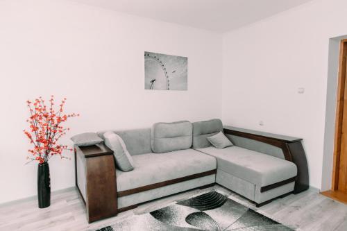 Apartments In Uzhgorod