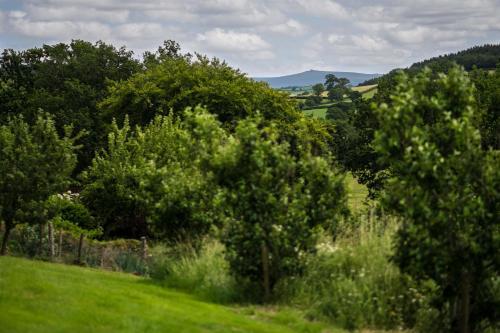 Coryton, Okehampton, Devon EX20 4PE, England.
