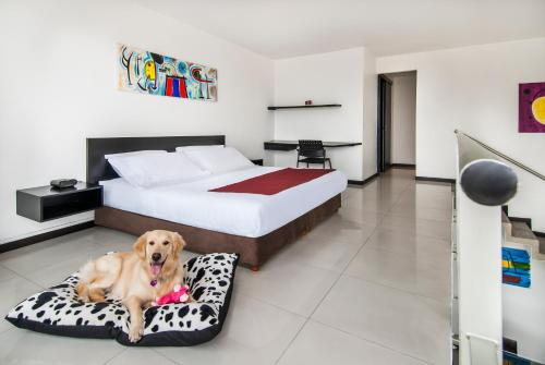 Hotel Orange Suite Medellin