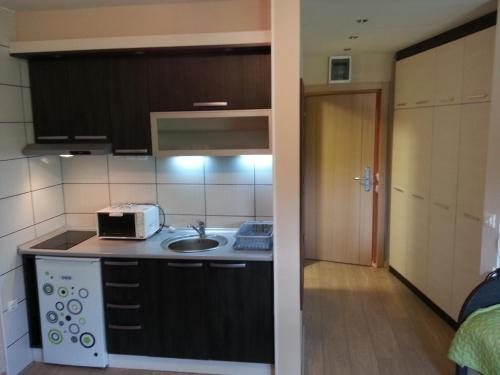 Apartment Brvenik Plus - Kopaonik