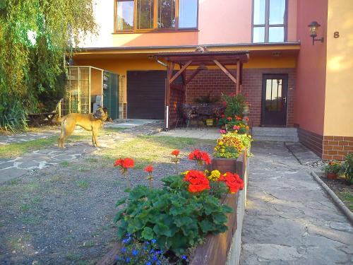 . Apartments České Středohoří