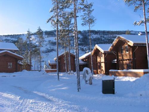 Vrådal Booking Lodge Kviteseid in Norway