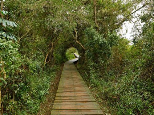 Perna Perna St Lucia - Photo 4 of 20