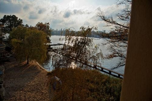 Seminar- und Gästehaus Flussbad Gartenstrasse photo 18