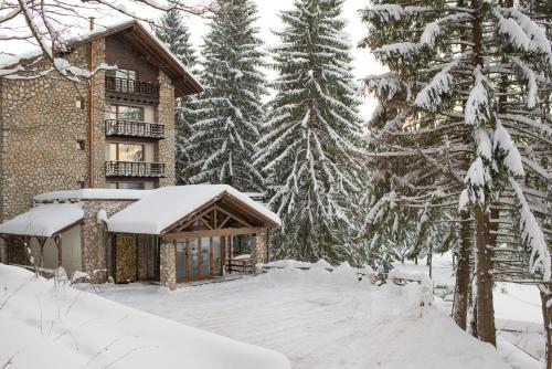 Ana Hotels Bradul Poiana Brasov