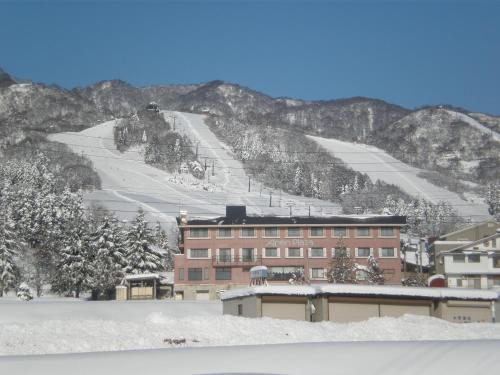 Alpen Plaza - Hotel - Iiyama