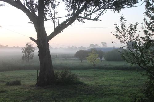 Фото отеля Abington Farm