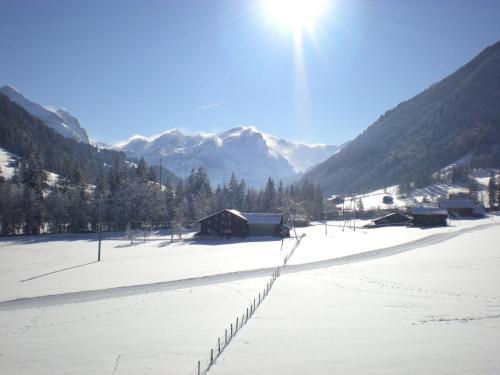 Farfalla Gstaad