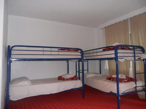 BackPackers Paradise Hostel room photos