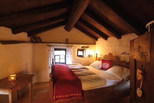 Accommodation in Surcasti
