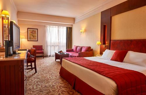 Safir Hotel Cairo - image 10