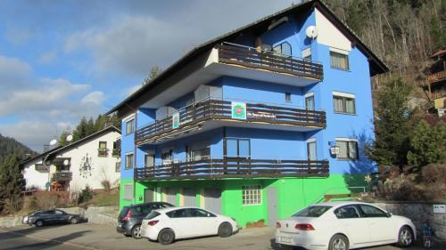 Pension Blaues Haus - Accommodation - St. Blasien