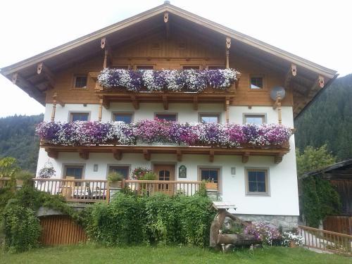 . Ferienwohnungen Behamhof