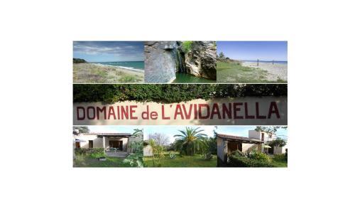 . Domaine de l'Avidanella