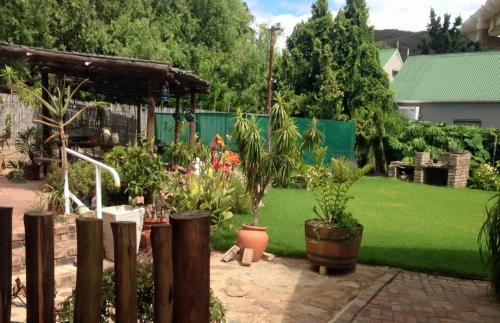 Asboom-Ashtree Guesthouse (B&B)