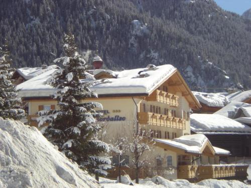 Albergo Fiordaliso - Hotel - Canazei di Fassa