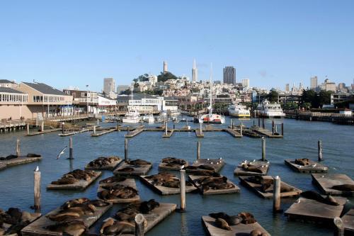 425 North Point St, San Francisco, CA 94133, United States.