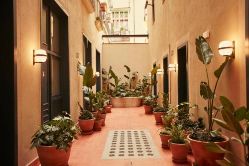 Hotel Casa Bonay photo 2