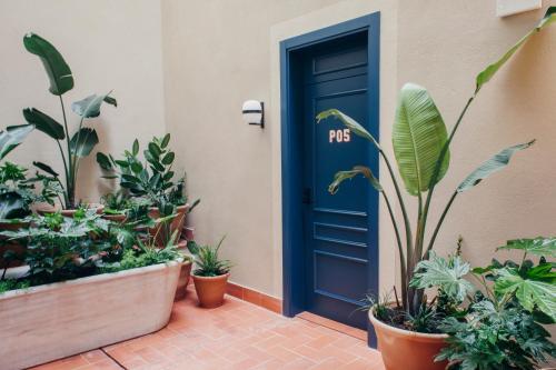Hotel Casa Bonay photo 3