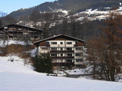 Montafon Apartment Schruns